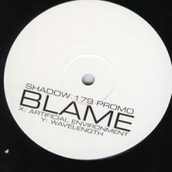 Blame - Artificial Environment / Wavelength (2006)
