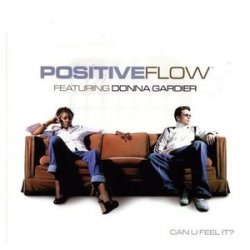 Positive Flow - Can You Feel it? (2004)