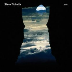 Steve Tibbetts - Natural Causes (2010)