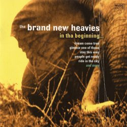 The Brand New Heavies - In Tha Beginning (1999)