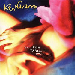 Ken Navarro - In My Wildest Dreams (1999)