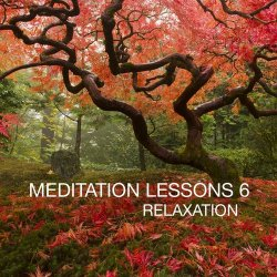VA - Meditation Lesson Vol.6 (2012)