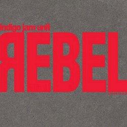 Label: Basis Records  Жанр: Jazz, Jam Band