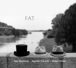 Alex Machacek, Raphael Preuschl, Herbert Pirker - Fat (2012)