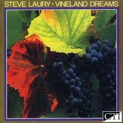 Steve Laury - Vineland Dreams (2006)
