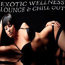 VA - Exotic Wellness Lounge and Chill Out Relaxing Selection of Erotic Lounge Grooves (2013)