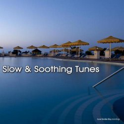 Slow and Soothing Tunes (2013)