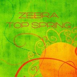 Label: Zebra 40 Жанр: Downtempo, Chillout, Lounge