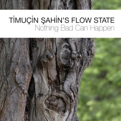 Timucin Sahin's Flow State - Nothing Bad Can Happen (2017) [Hi-Res]