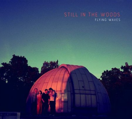 Still In The Woods - Flying Waves (2019)